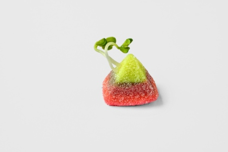 01_candy_veg.jpg